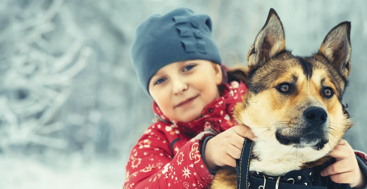 snowgirldog2